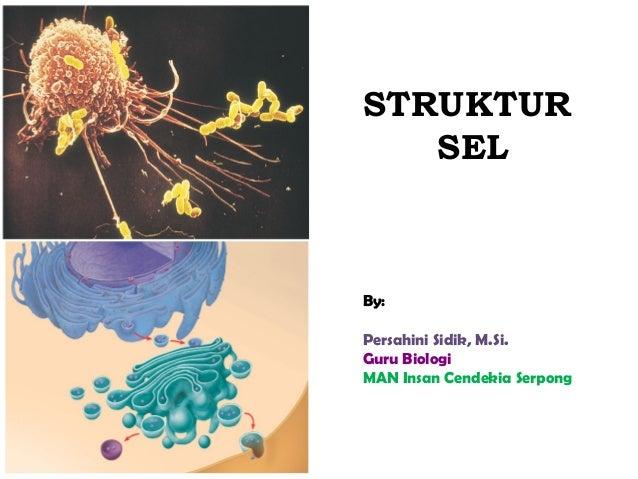 STRUKTUR   SELBy:Persahini Sidik, M.Si.Guru BiologiMAN Insan Cendekia Serpong