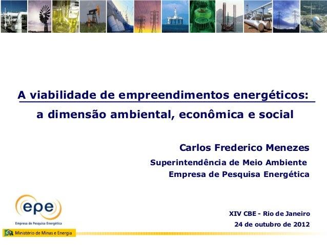 A viabilidade de empreendimentos energéticos:  a dimensão ambiental, econômica e social                         Carlos Fre...