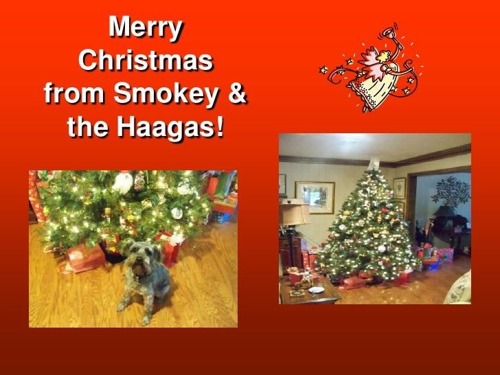 MerryChristmasfrom Smokey &the Haagas!<br />