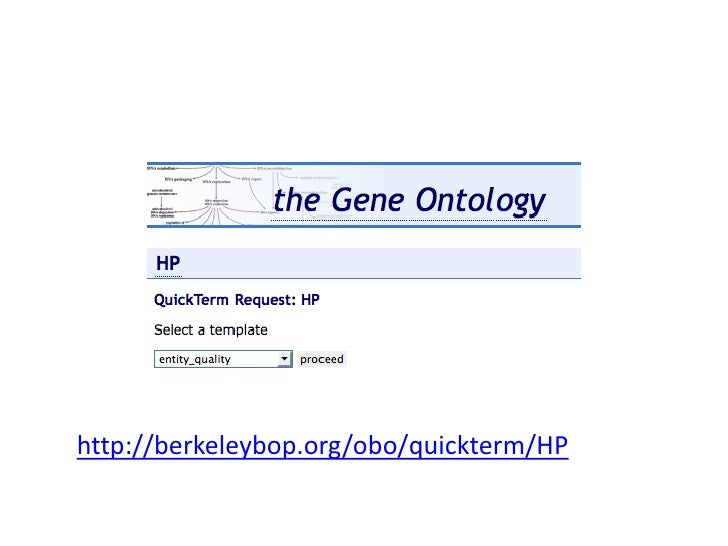 http://berkeleybop.org/obo/quickterm/HP<br />