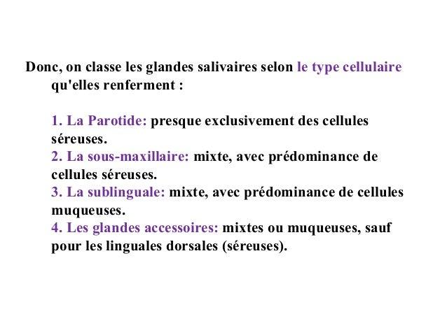 Donc, on classe les glandes salivaires selon le type cellulaire qu'elles renferment : 1. La Parotide: presque exclusivemen...