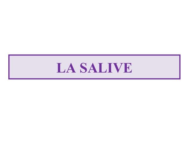 LA SALIVE