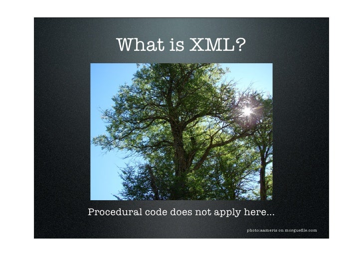 What is XML?     Procedural code does not apply here...                                 photo:aameris on morguefile.com