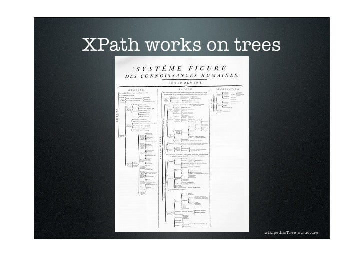 XPath works on trees                       wikipedia:Tree_structure