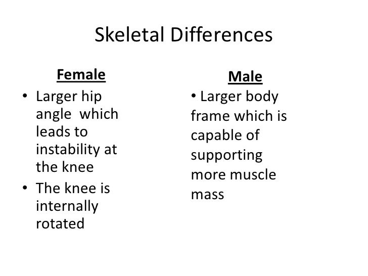 difference between male and female body