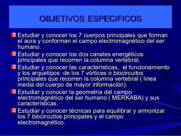 Anatomia energetica Slide 3
