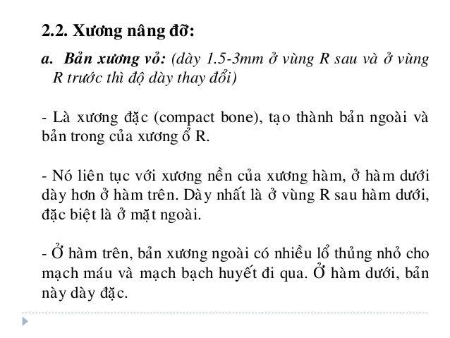 2.2. Xöông naâng ñôõ: a. Baûn xöông voû: (daøy 1.5-3mm ôû vuøng R sau vaø ôû vuøng R tröôùc thì ñoä daøy thay ñoåi) - Laø ...