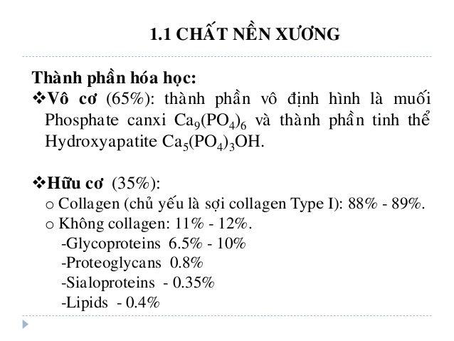 1.1 CHAÁT NEÀN XÖÔNG Thaønh phaàn hoùa hoïc: Voâ cô (65%): thaønh phaàn voâ ñònh hình laø muoái Phosphate canxi Ca9(PO4)6...