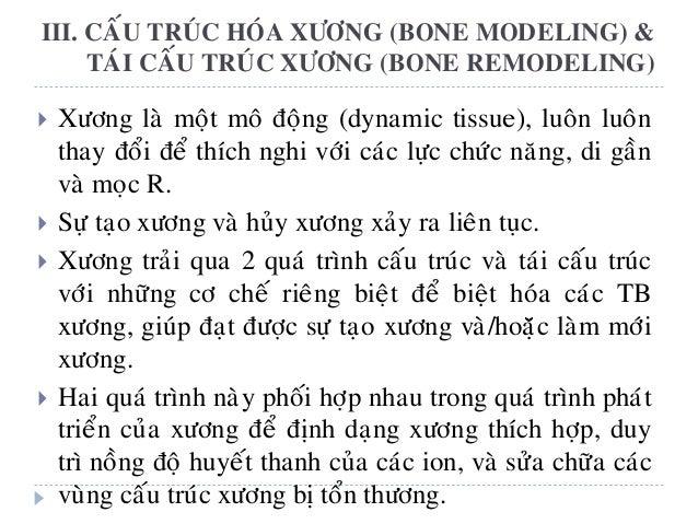 Caáu truùc (modeling) Taùi caáu truùc (remodeling) Huûy xöông vaø taïo xöông xaûy ra ñoäc laäp. Huûy xöông vaø taïo xöông ...
