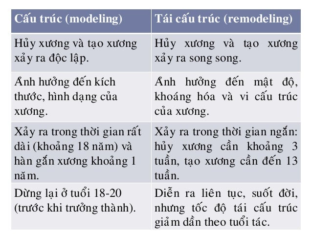 Taùi caáu truùc xöông (chu chuyeån xöông)  Söï chuyeån hoùa vaø ñoåi môùi xöông (huûy xöông cuõ/ xöông bò toån haïi, thay...