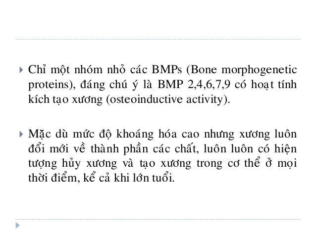  Chæ moät nhoùm nhoû caùc BMPs (Bone morphogenetic proteins), ñaùng chuù yù laø BMP 2,4,6,7,9 coù hoaït tính kích taïo xö...