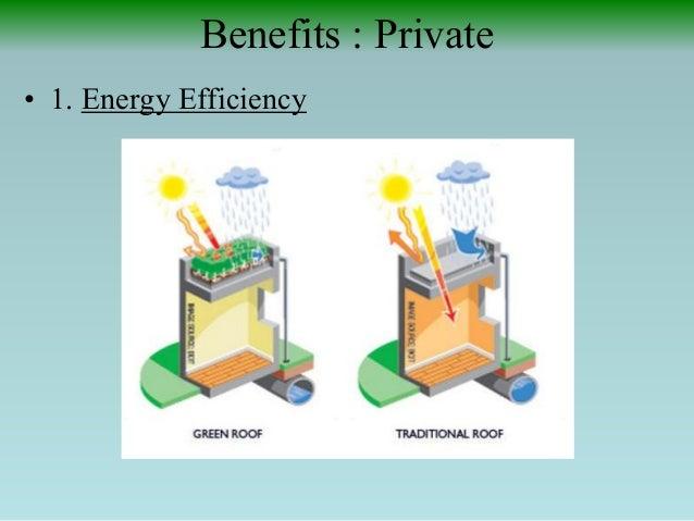Benefits Private 1  Green Roofs Gardening Saving the Planet. Rooftop Garden Benefits   SNSM155 com