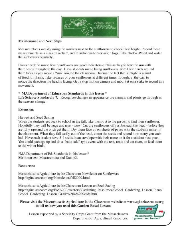 Grade 1 School Garden Lesson Plan - Sunflower Power ~ Massachusetts