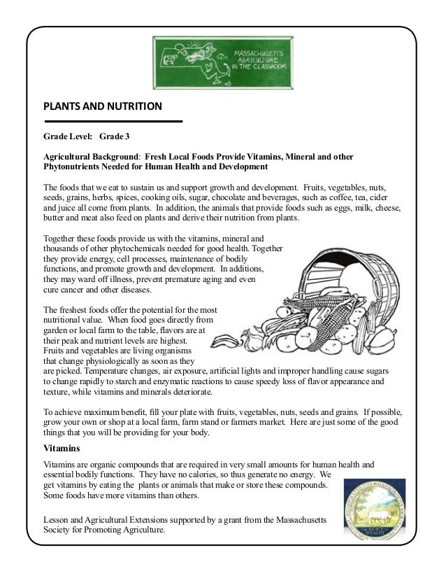 human nutrition worksheet essay