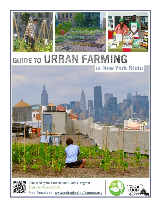 urban farming in new york Reverends robert and devanie jackson, founders of the brooklyn rescue  mission urban harvest center in new york city, are proud of the fig.