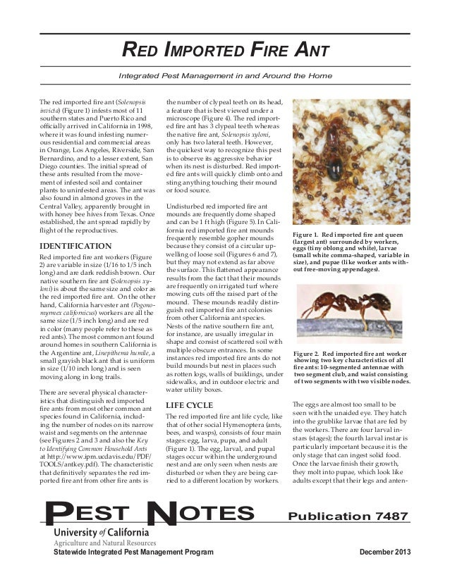 Red Imported Fire Ant  Integrated Pest Management in and Around the Home  The red imported fire ant (Solenopsis  invicta) ...