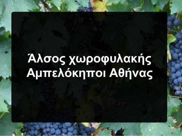 Άλσος χωροφυλακής Αμπελόκηποι Αθήνας