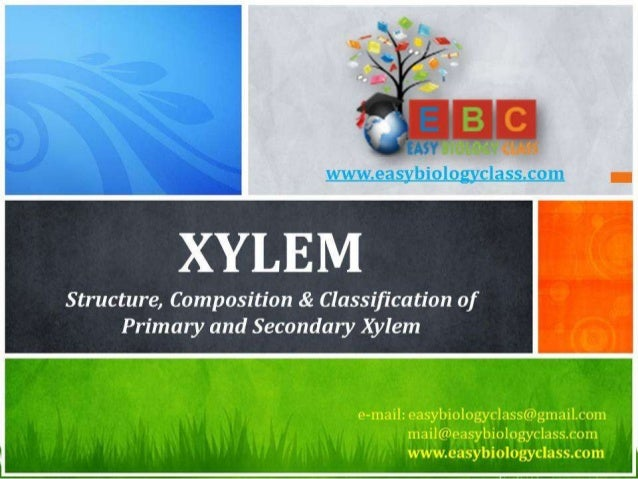 For detailed description of this topic: Please Click on.. http://www.easybiologyclass.com/complex-tissue-systems-in-plants...