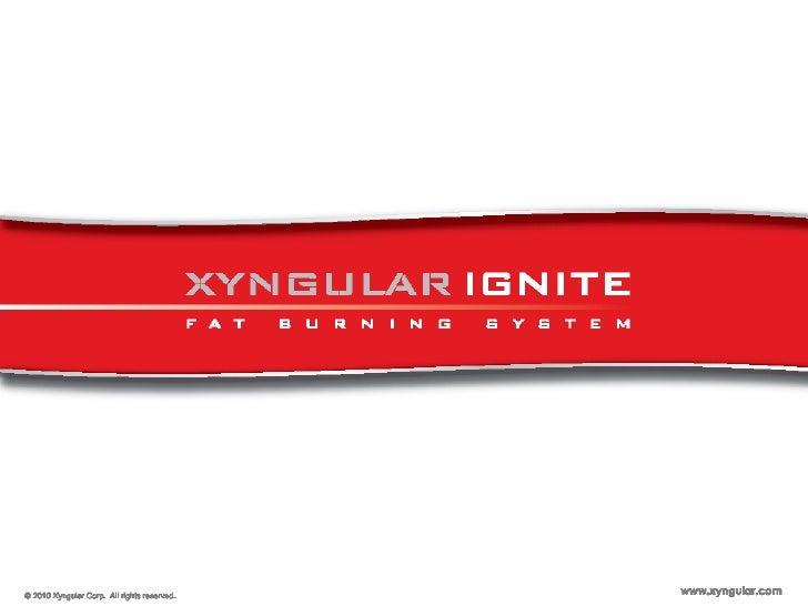 Xyn Ignite Ppt