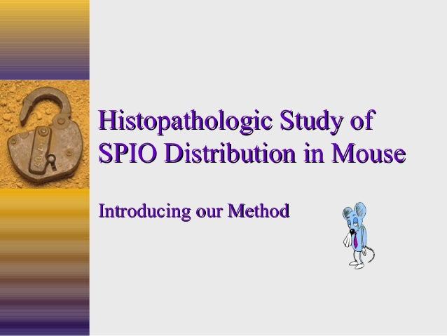 Histopathologic Study ofHistopathologic Study of SPIO Distribution in MouseSPIO Distribution in Mouse Introducing our Meth...
