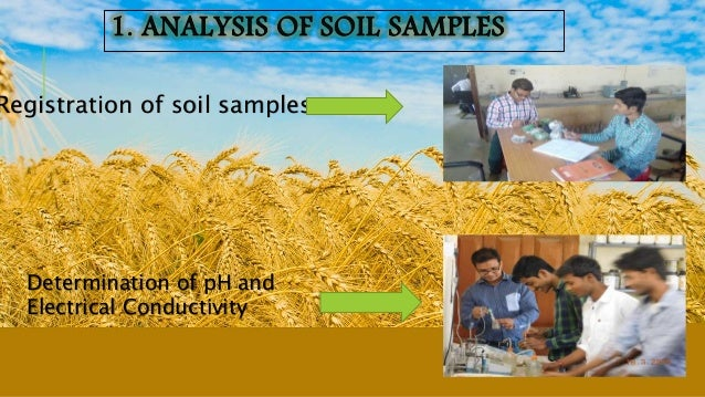 Registration of soil samples. Determination of pH and Electrical Conductivity