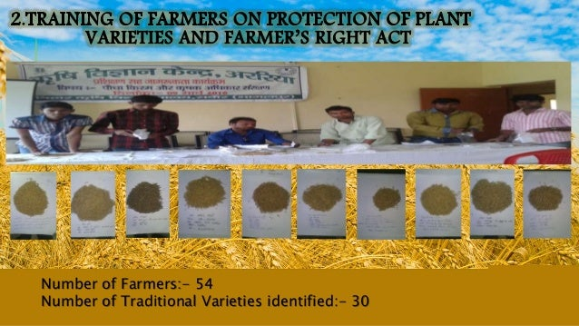 Number of Farmers:- 54 Number of Traditional Varieties identified:- 30