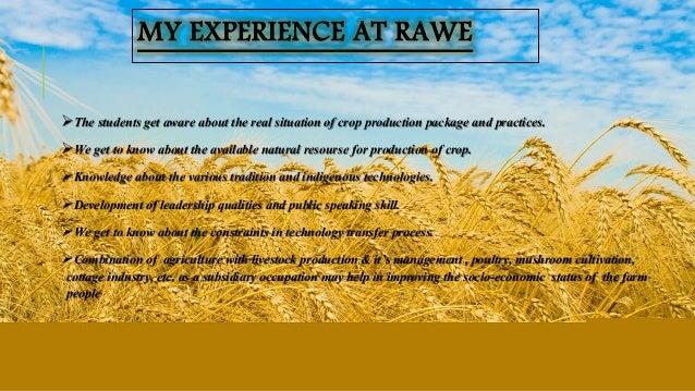RAWE Presentation