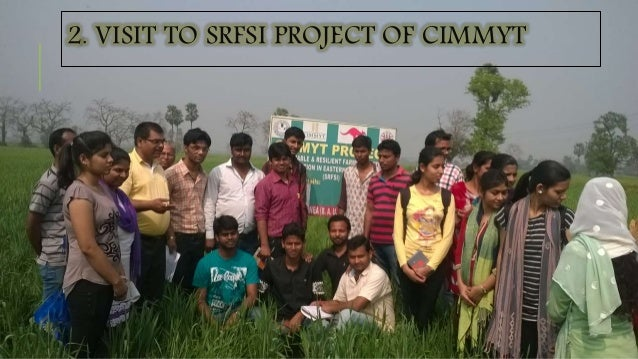 2. VISIT TO SRFSI PROJECT OF CIMMYT
