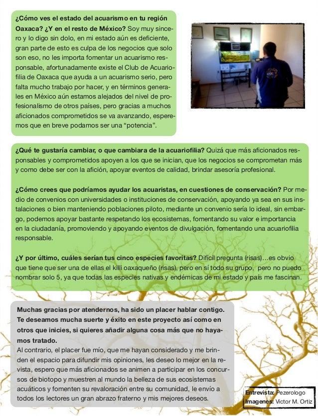 Biotope Aquarium Magazine 2