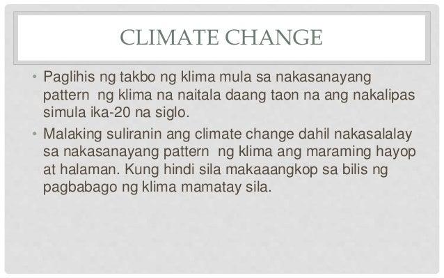epekto ng climate change sa kapaligiran essay