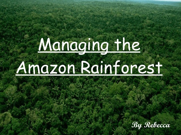 Managing the Amazon Rainforest By Rebecca