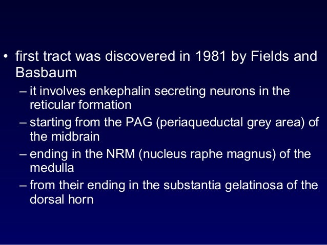 • first tract was discovered in 1981 by Fields and Basbaum – it involves enkephalin secreting neurons in the reticular for...
