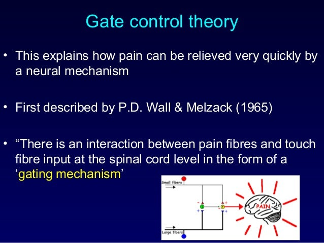 Gate control theory • This explains how pain can be relieved very quickly by a neural mechanism • First described by P.D. ...