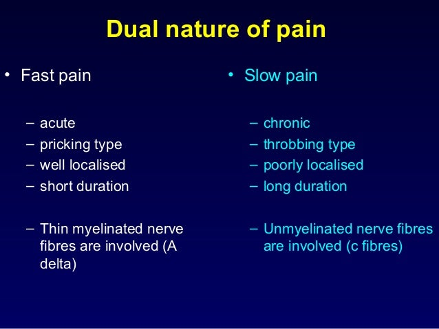 Dual nature of pain • Fast pain – acute – pricking type – well localised – short duration – Thin myelinated nerve fibres a...