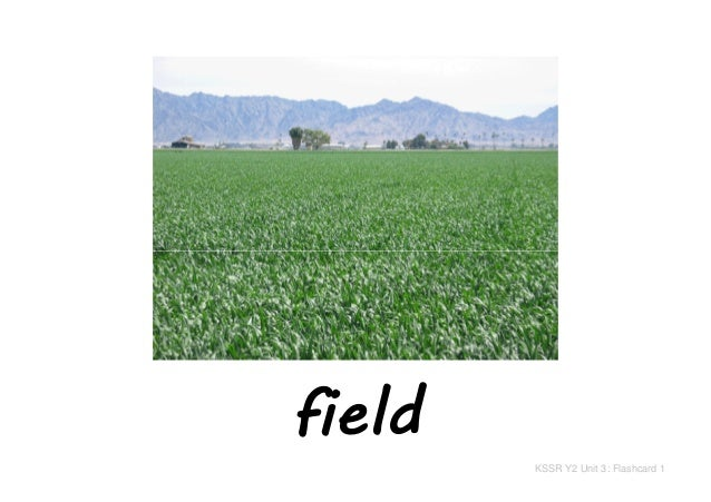 field KSSR Y2 Unit 3: Flashcard 1