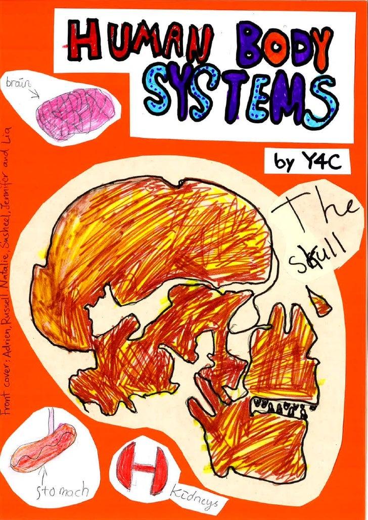 Y4C human body systems