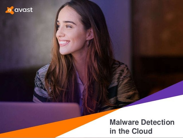 Malware Detection in the Cloud
