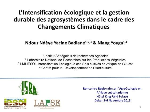 1 L'Intensification écologique et la gestion durable des agrosystèmes dans le cadre des Changements Climatiques Ndour Ndèy...
