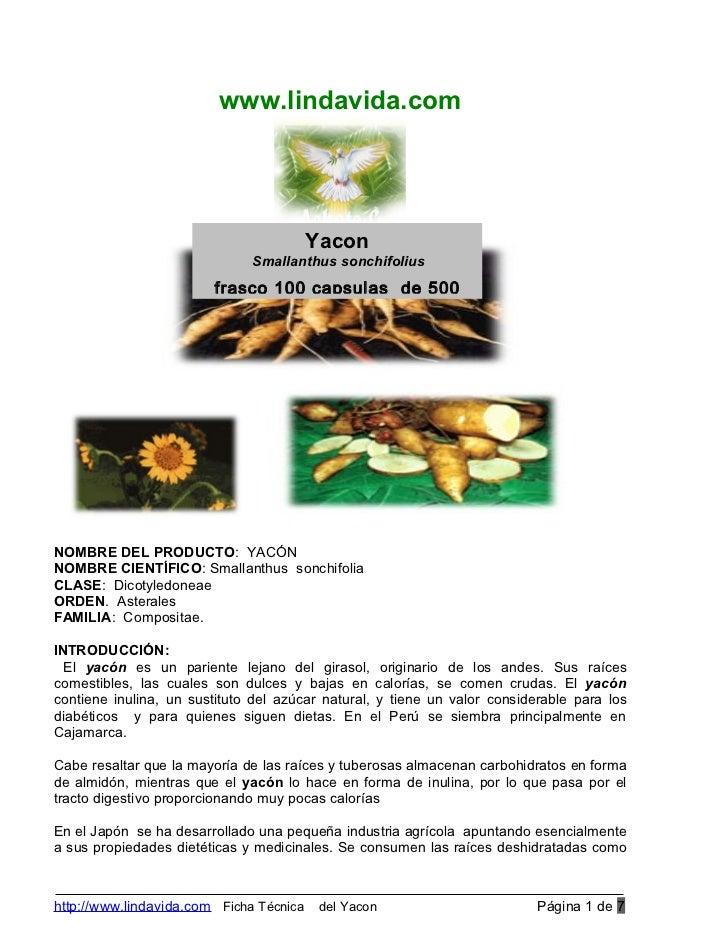 www.lindavida.com                                         Yacon                              Smallanthus sonchifolius     ...