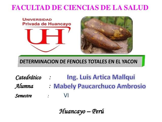 FACULTAD DE CIENCIAS DE LA SALUD Catedrático : Semestre : VI Huancayo – Perú Alumna :