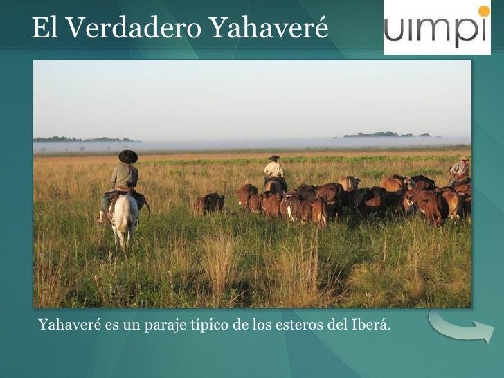 El Verdadero Yahaveré Yahaveré es un paraje típico de los esteros del Iberá.