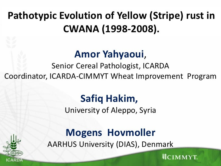 Pathotypic Evolution of Yellow (Stripe) rust in            CWANA (1998-2008).                 Amor Yahyaoui,              ...