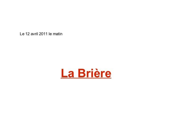 La Brière Le 12 avril 2011 le matin