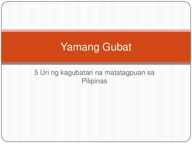 yamang gubat Yamang dagat, muntinlupa city 327 likes yamang dagat is a manufacturer of high quality capiz products for local retail sale and export wholesale.