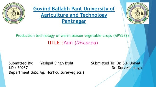 Govind Ballabh Pant University of Agriculture and Technology Pantnagar Production technology of warm season vegetable crop...