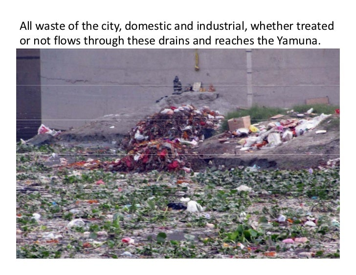 All waste of the city, domestic and industrial, whether treated or not flows through these drains and reaches the Yamuna.