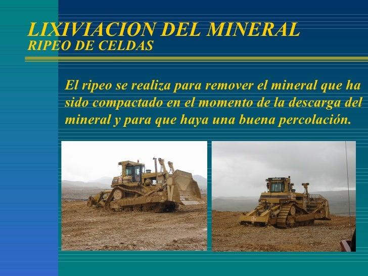 LIXIVIACION DEL MINERAL RIPEO DE CELDAS El ripeo se realiza para remover el mineral que ha sido compactado en el momento d...