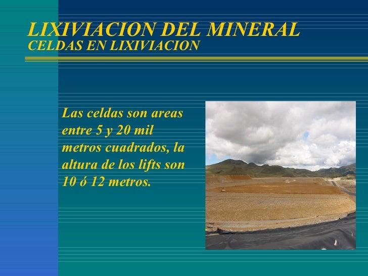 LIXIVIACION DEL MINERAL CELDAS EN LIXIVIACION Las celdas son areas entre 5 y 20 mil metros cuadrados, la altura de los lif...