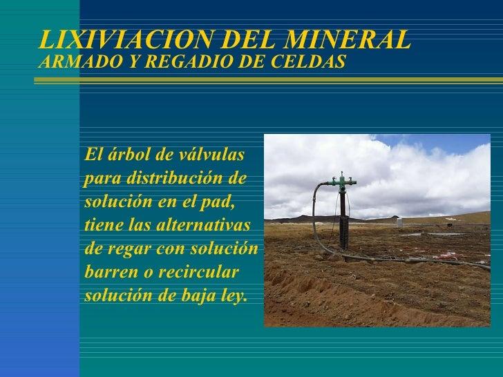 LIXIVIACION DEL MINERAL ARMADO Y REGADIO DE CELDAS El árbol de válvulas para distribución de solución en el pad, tiene las...