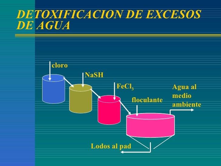 DETOXIFICACION DE EXCESOS DE AGUA cloro NaSH FeCl 3 floculante Lodos al pad Agua al medio ambiente
